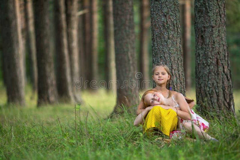 Gulliga små systrar i en pinjeskognatur royaltyfri fotografi