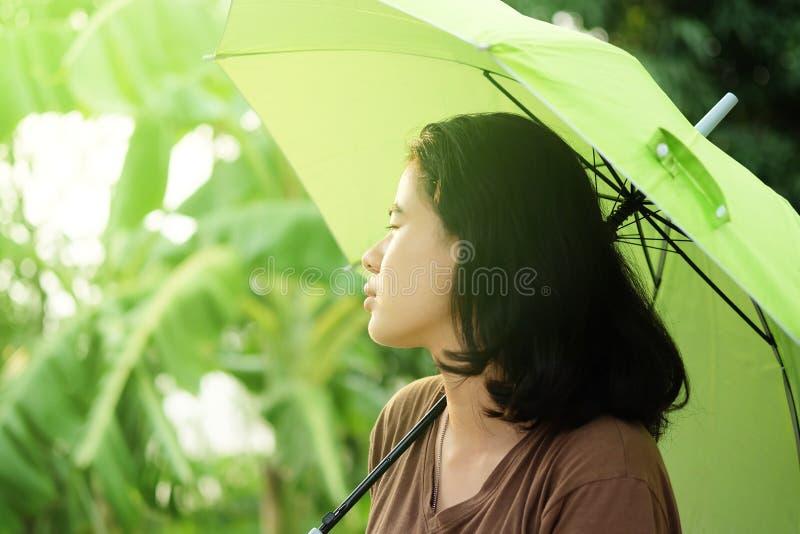 Gulligt asiatiskt kvinnainnehavparaply med solljus i det varma v?dret royaltyfria bilder