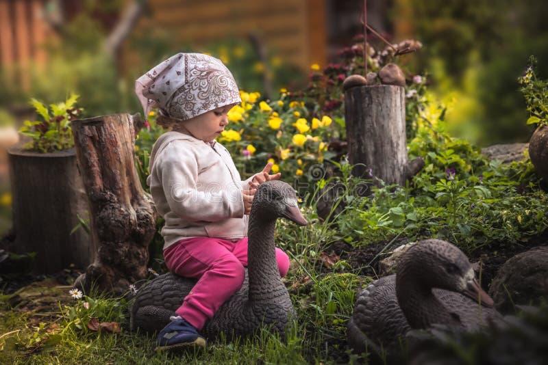Gulligt behandla som ett barn flickan som spelar i felik blomstra trädgård i bygd med gåsen bland härliga blommor i sommardagen s arkivbild