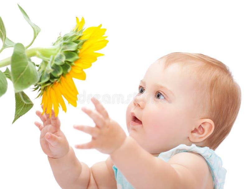 Gulligt behandla som ett barn med solrosen arkivbild