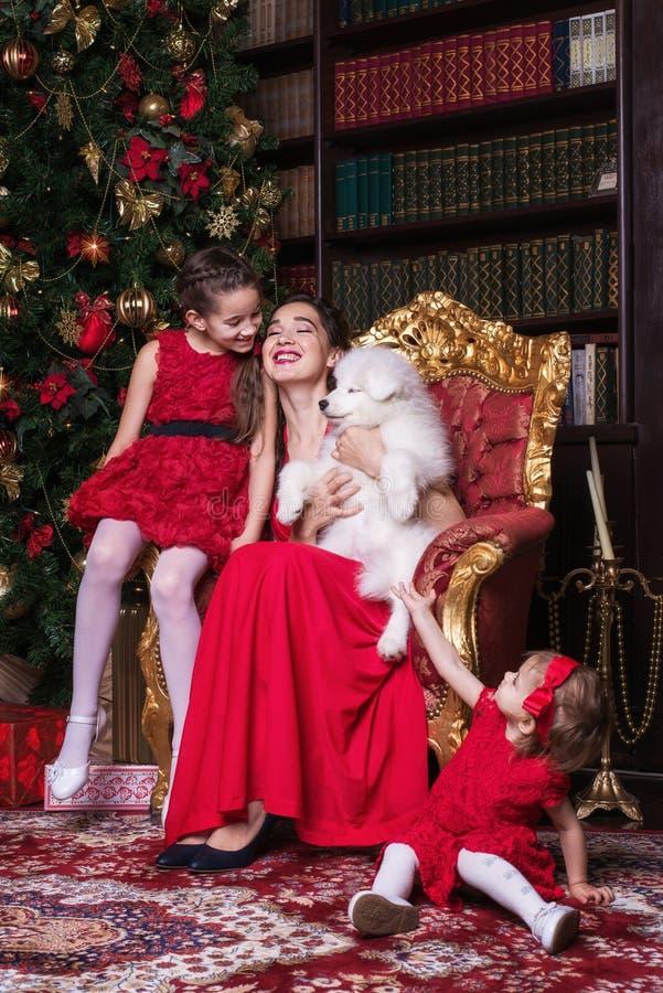 Gulligt familjsammanträde i fåtölj nära julträdet, bärande röda klänningar Le mamman och döttrar Spela med samoyedhunden Chr fotografering för bildbyråer