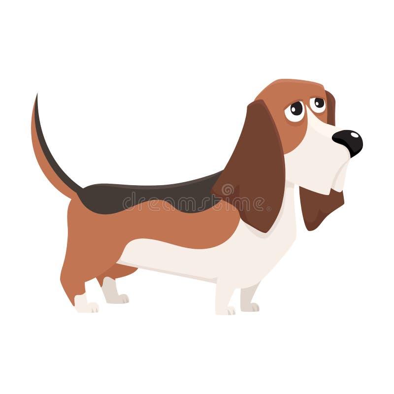 Gulligt fullblods- tecken för bassethundhund, tecknad filmvektorillustration stock illustrationer