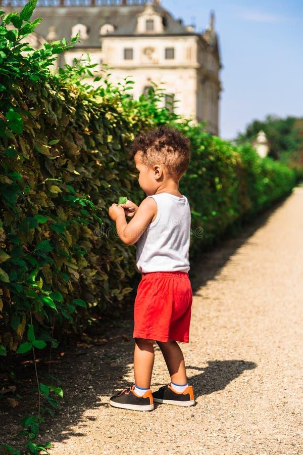 Gulligt litet afrikansk amerikan- eller latin-amerikan pojkeanseende nära häcken arkivbild