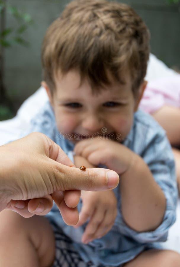 Gulligt litet barn som känslomässigt reagerar, glädjas, därför att han såg nyckelpigan fotografering för bildbyråer