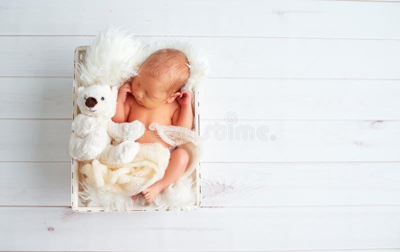Gulligt nyfött behandla som ett barn sömnar med leksaknallebjörnen i korg arkivbilder