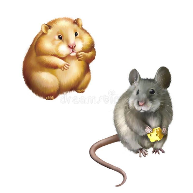 Gulligt rött hamstersammanträde, husmus som äter stycket stock illustrationer