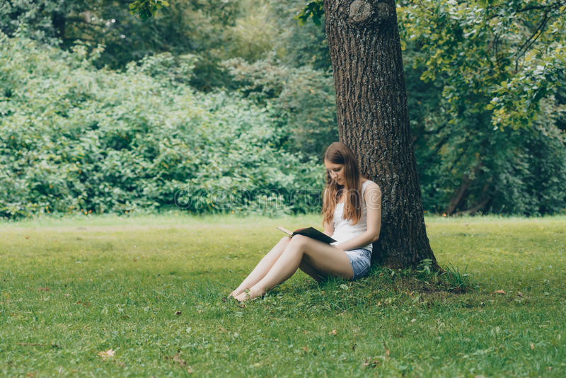 Gulligt sammanträde för ung kvinna på gräset under träd och läsning boken fotografering för bildbyråer