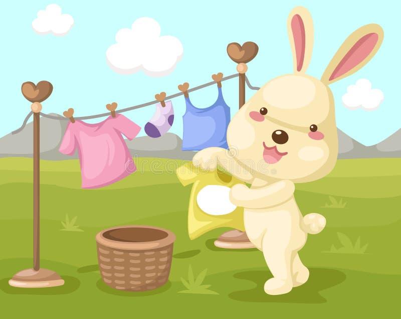 gulligt torka kanintvätten royaltyfri illustrationer