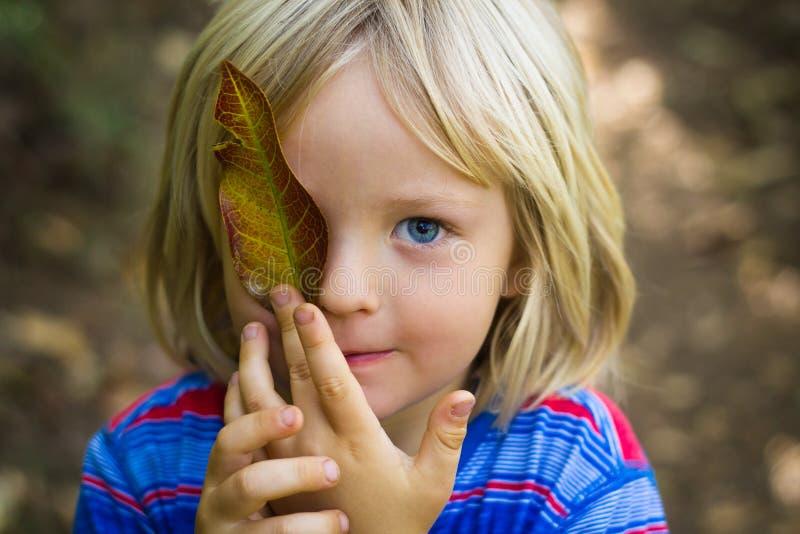 Gulligt ungt barn som rymmer ett blad över öga royaltyfria bilder
