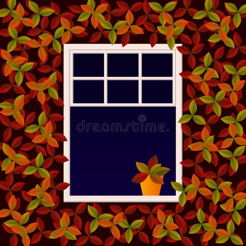 Gulligt vitt fönster, utomhus- sikt Väggen täckas med klättringväxten med röda och orange sidor Blomma i krukaställningar på royaltyfri illustrationer