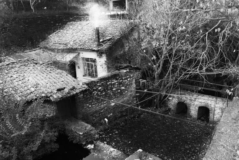 Gulligt vitt gammalt hus i skog royaltyfri foto