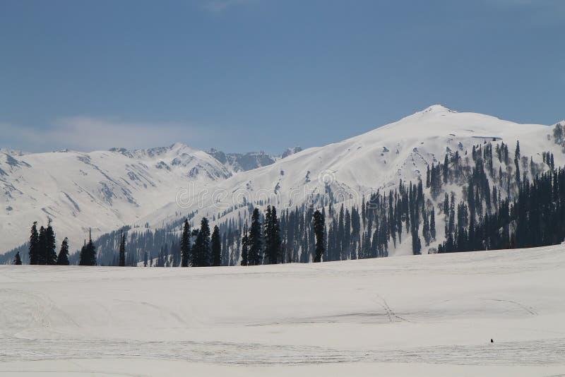 Gulmarg, Srinagar, India: Piękny krajobraz z śnieżną górą fotografia stock