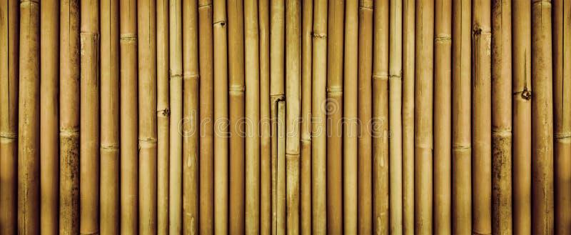 Gulna torkad bambustakettextur, bambutexturbakgrund royaltyfria bilder