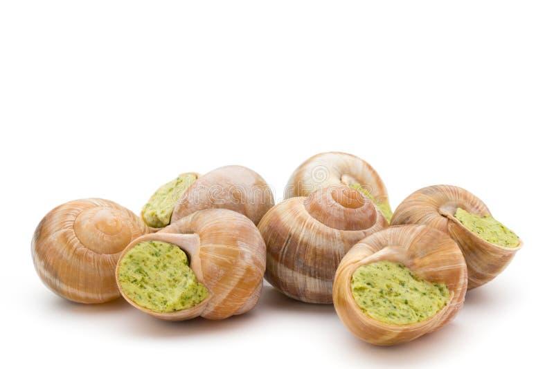 guloseima cozinhada dos caracóis Culinária francesa caracóis enchidos imagem de stock