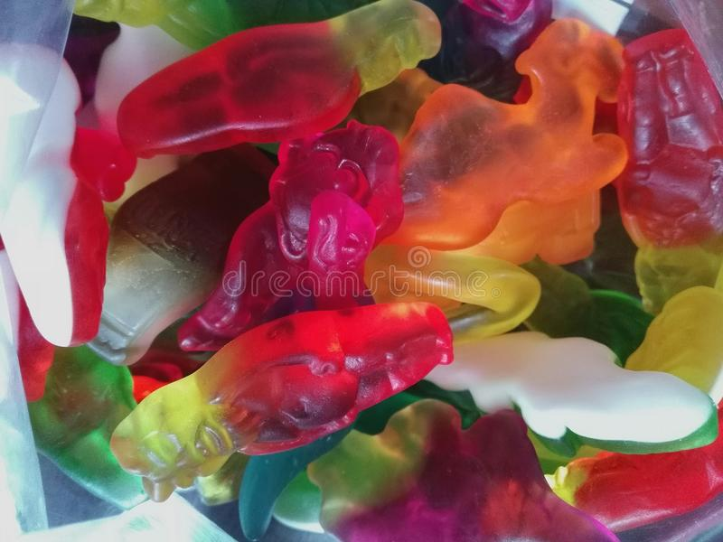 Gum candy royalty free stock photo