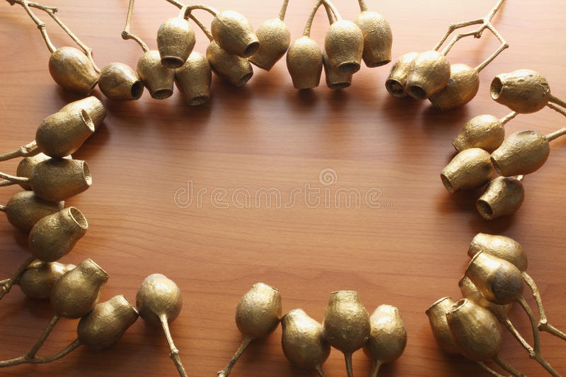 Gum Nuts. On Wooden Background stock photos