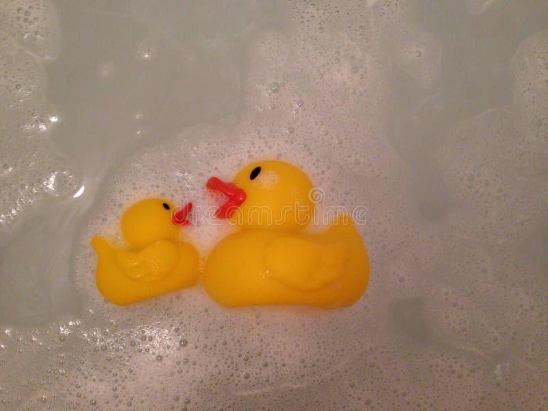 Gummi duckar i badet arkivbild