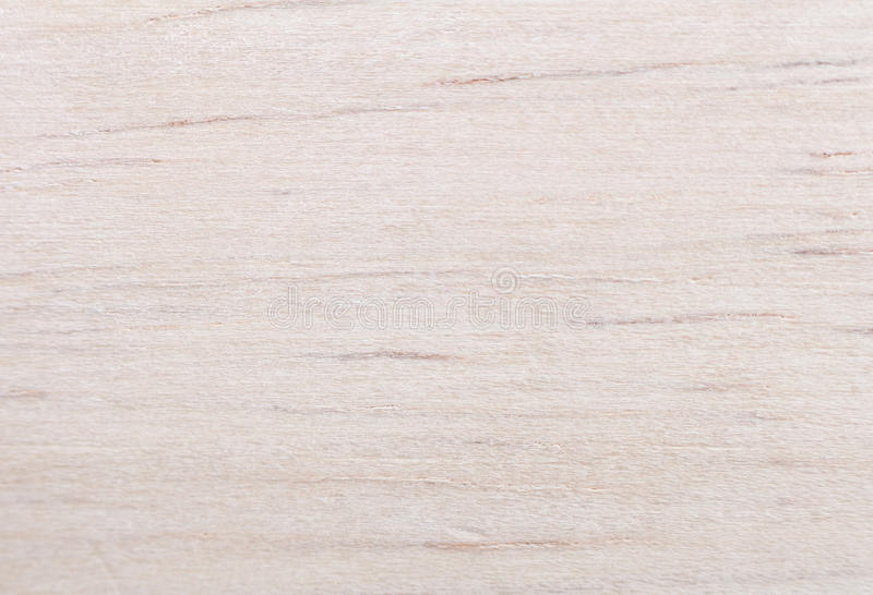 Download Gummibaum Wood Texture Royalty Free Stock Images - Image: 28199709
