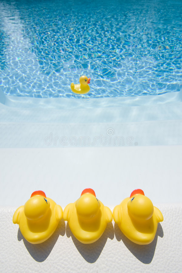 Gummienten im Pool lizenzfreie stockfotografie
