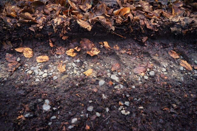 Gummihjulspår i grusvägbakgrundstexturen royaltyfri foto