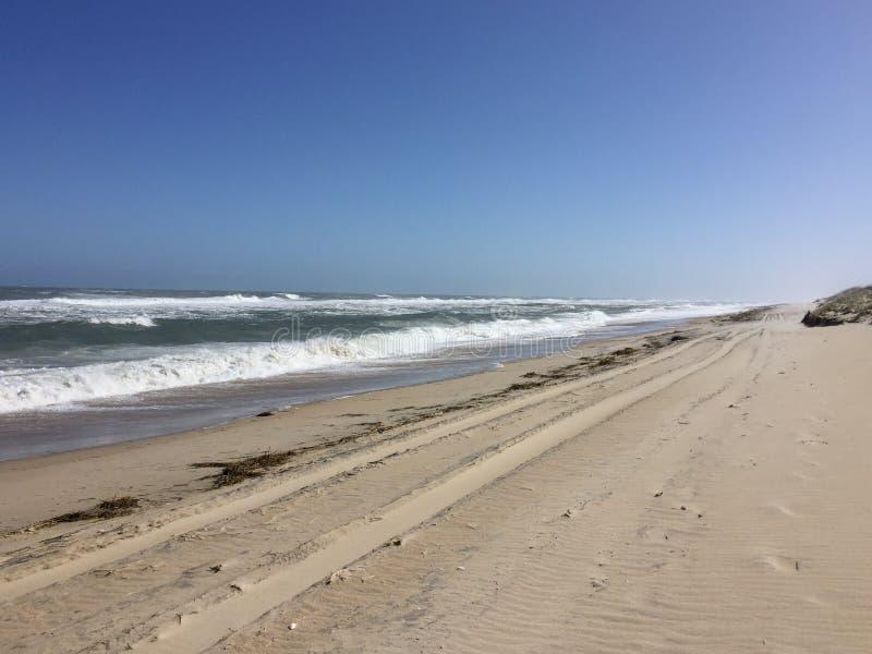 Gummihjulspår på en öde strand royaltyfri bild