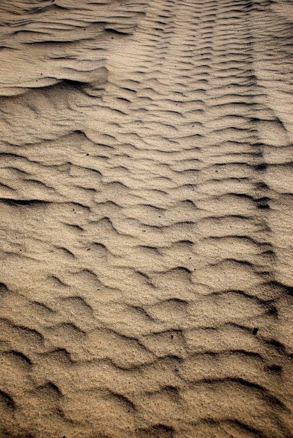 Gummireifen-Schritt in Sand-Vertikalem stockbild