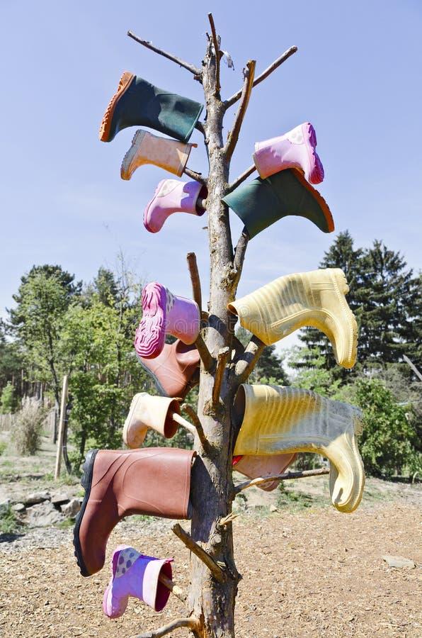 Gummistöveler som klibbar på ett skalligt träd royaltyfria foton
