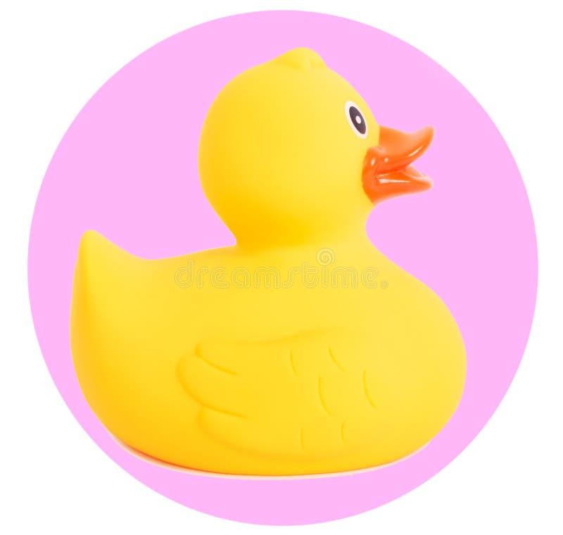 Gumowa kaczka koloru żółtego zabawka dla pływać odizolowywam na bielu obraz stock