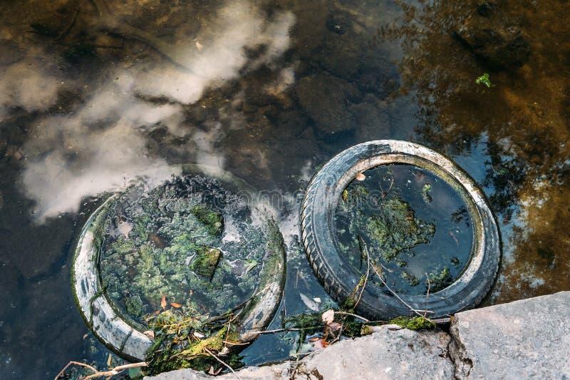 Gumowa opona toczy blisko brzeg rezerwat wodny, zanieczyszczenia środowisko i morza, obrazy royalty free