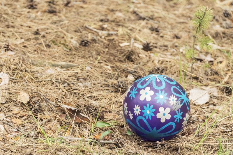 Gumowa piłka w sosnowym lesie obrazy royalty free
