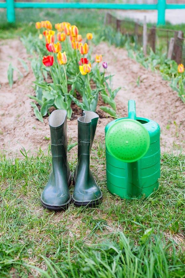 Gumowi buty z podlewanie puszką na trawie obraz royalty free