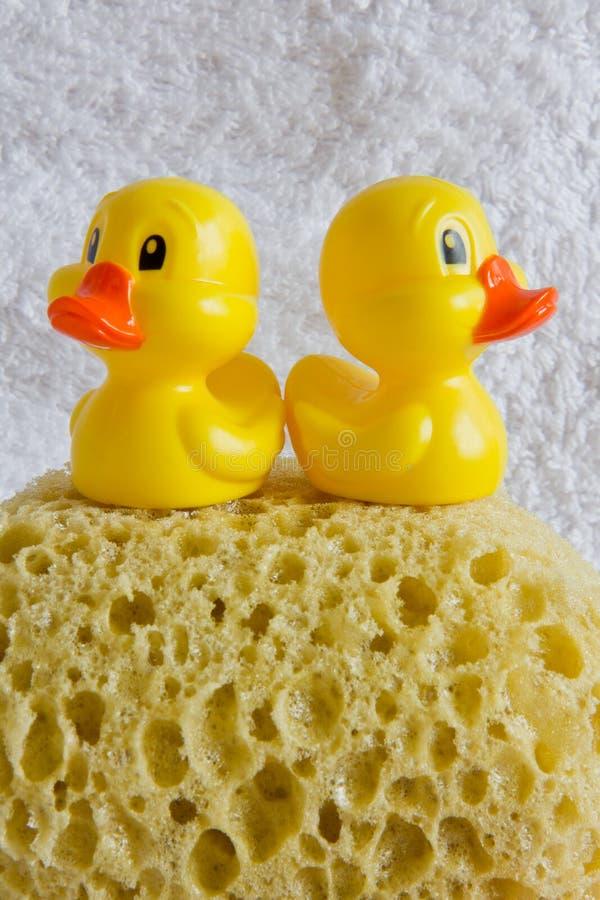 Download Gumowi kaczątka zdjęcie stock. Obraz złożonej z higiena - 28959592