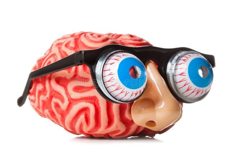 Gumowy mózg z śmiesznym nosem i szkłami obraz royalty free