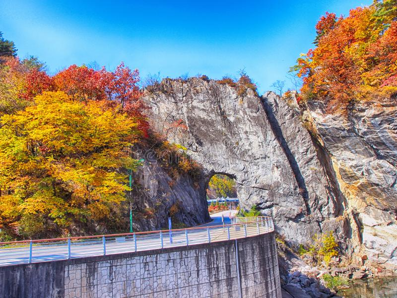 Gumunso Natuurlijke Tunnel in Taebaek, Gangwondo, Zuid-Korea, Azië stock foto
