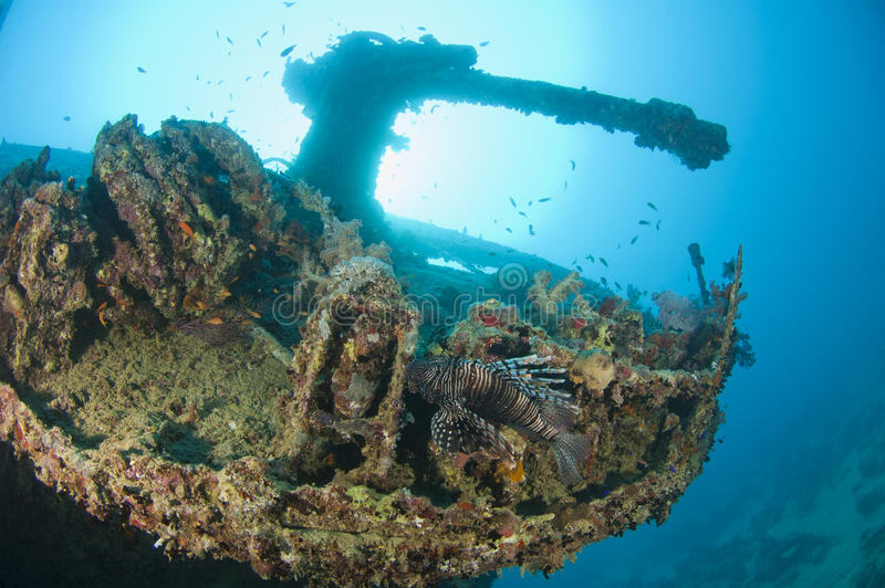 Gun on a the stern of a large shipwreck stock photos