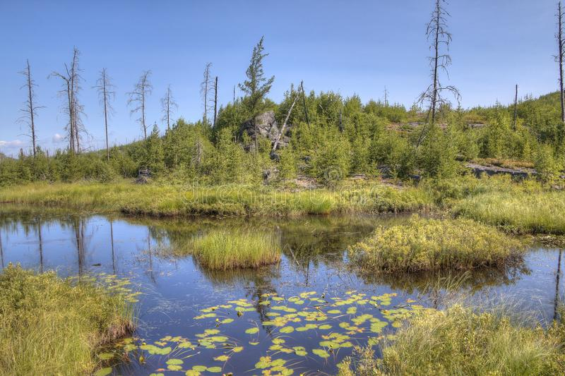 Gunflint足迹在优越国家森林,明尼苏达里 图库摄影