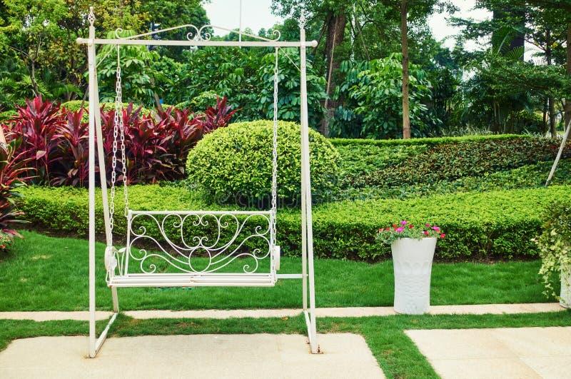 Gunga i trädgård royaltyfria foton