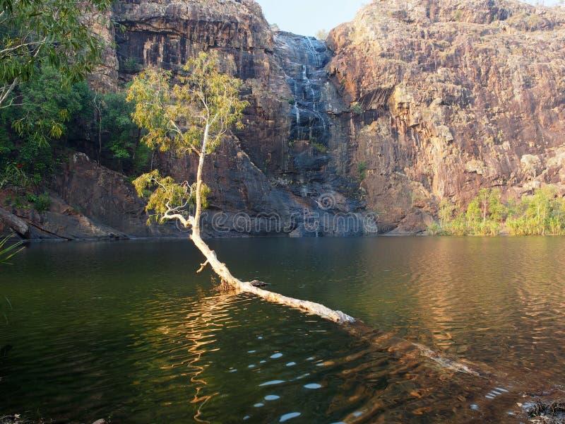 Gunlom (Waterfall Creek) Pool, Kakadu National Park, Australia. Gunlom (Waterfall Creek) plunge pool in Kakadu National Park, Northern Territory, Australia stock photo