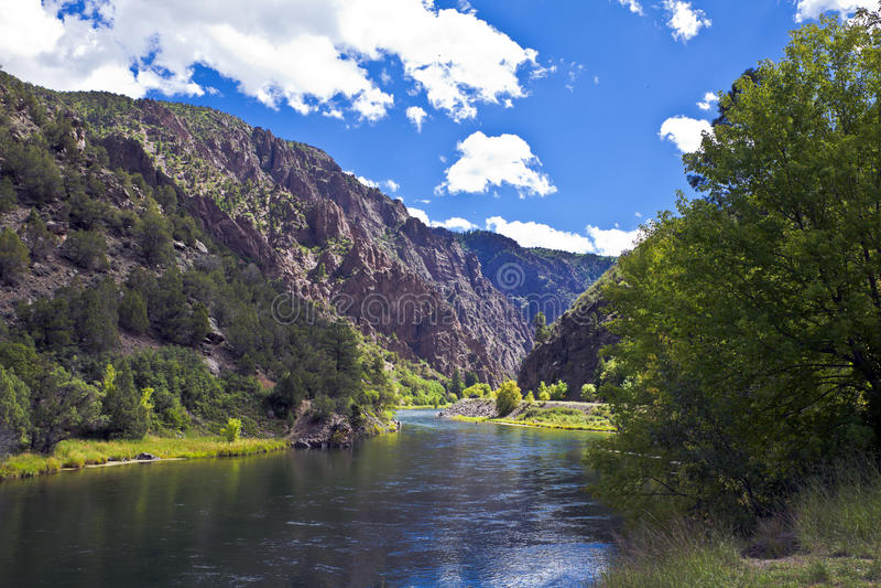 Gunnison Fluss in der schwarzen Schlucht stockbilder