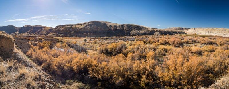 Gunnison rzeka w delta okręgu administracyjnym, Kolorado zdjęcie royalty free