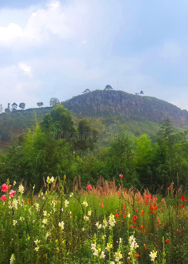 Gunung Batu royalty free stock photo