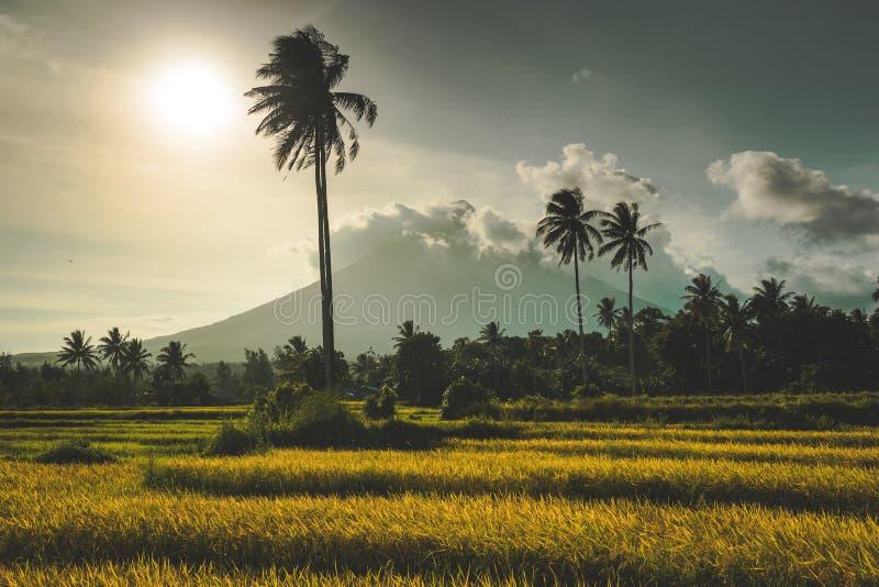 Gunung Merapi, a volcano on Java, Indonesia royalty free stock photos