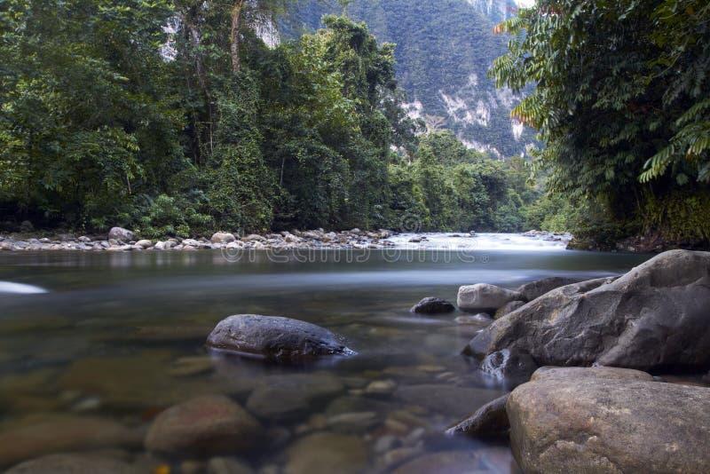 Gunung Mulu国家公园河在婆罗洲,马来西亚 库存图片