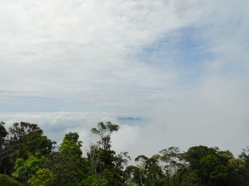 Gunung Raya, högst berg på Langkawi Malaysia arkivbilder