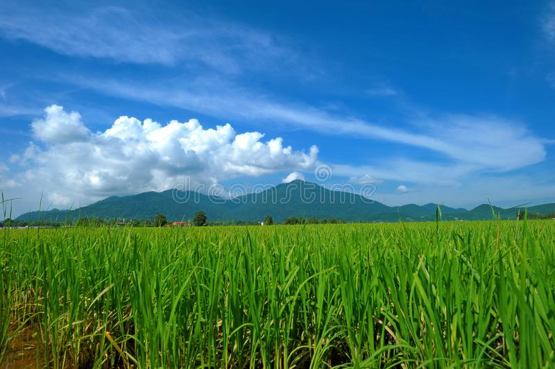 Gunung Raya, Langkawi fotografia stock
