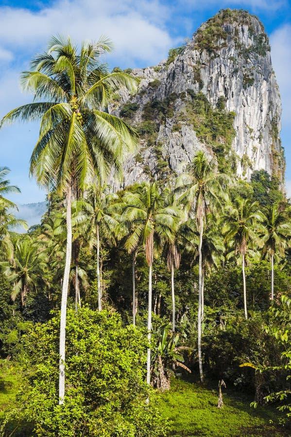 Gunung Reng στοκ φωτογραφίες