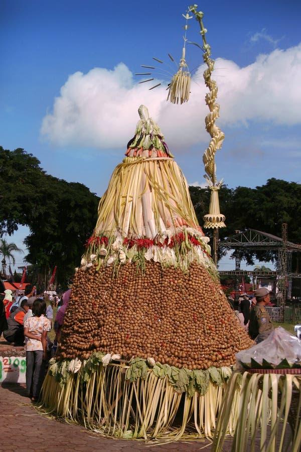 Gunungan ha fatto dalle verdure fotografia stock
