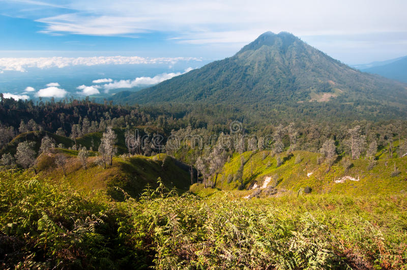 gunungmerapivulkan royaltyfri bild