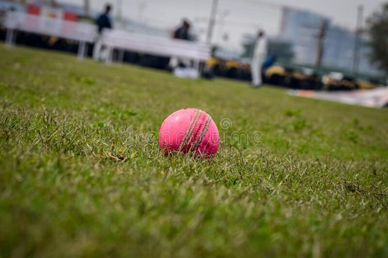 Gurgaon India – March 3 2019 : Full length of cricketer playing on field during sunny day. Gurgaon India – March 3 2019 : Full length of cricketer stock photo