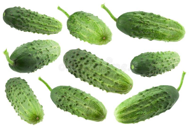 Gurkagrönsaksamling på vit royaltyfria bilder